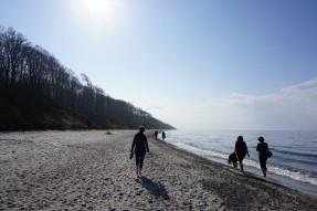 Gespensterwald Rostock mit Strand